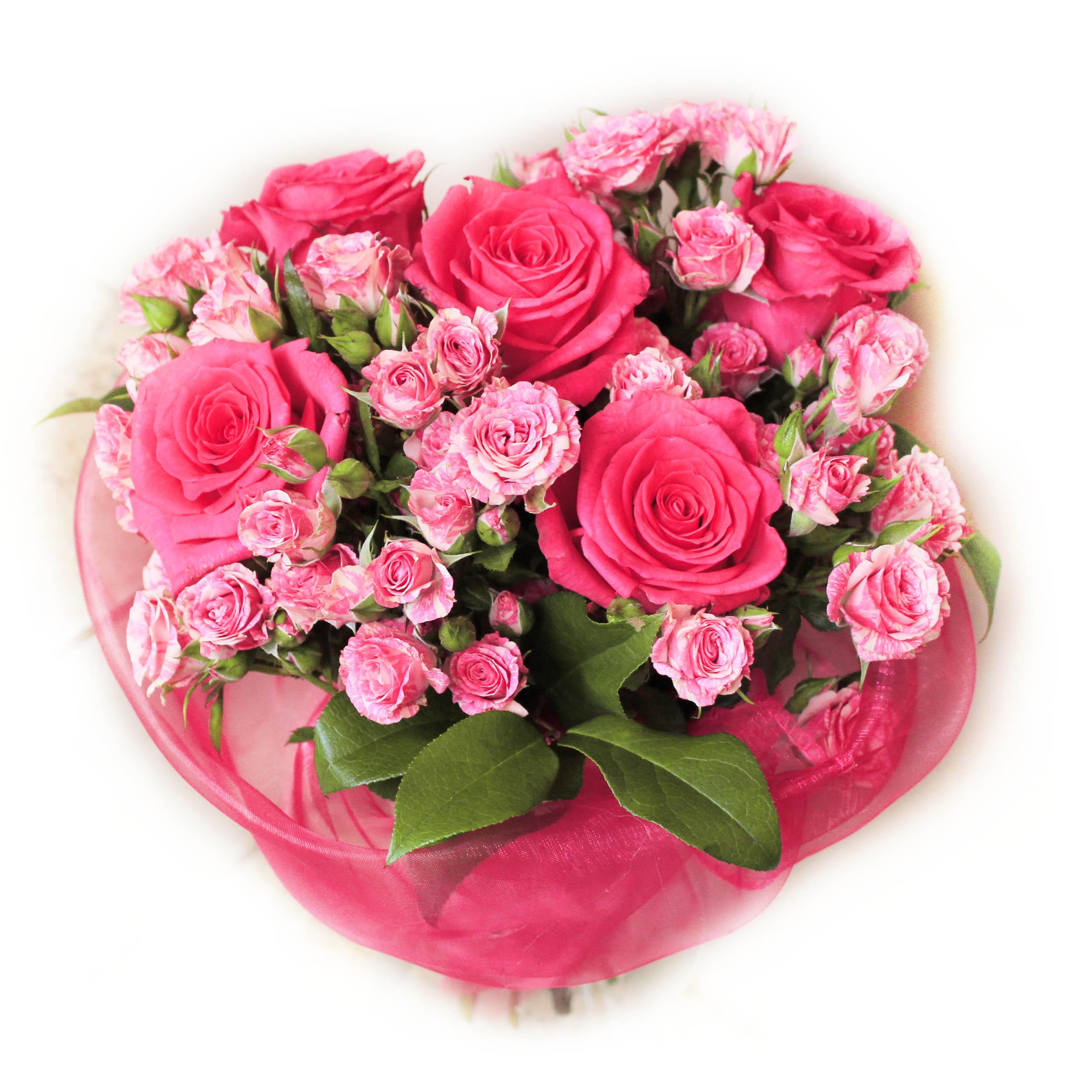 roses23.jpg